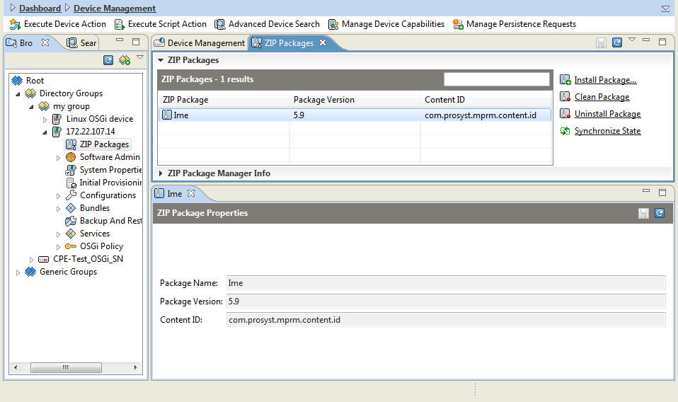 ProSyst Remote Manager 6 1 0: Managing ZIP Packages